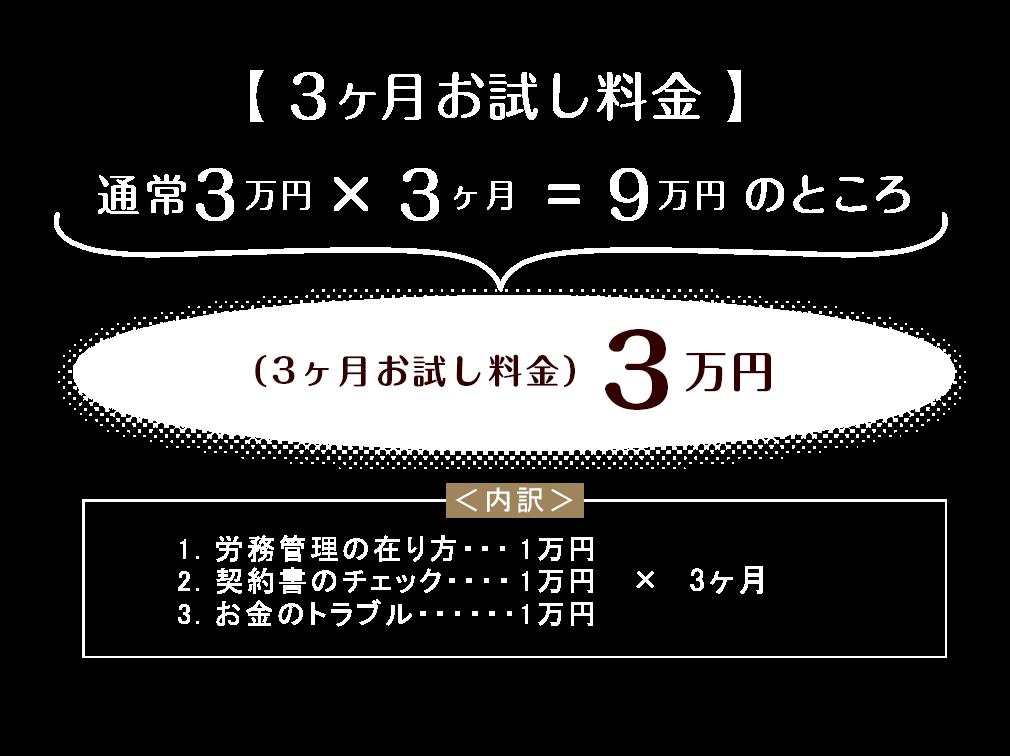 3ヶ月お試し料金3万円